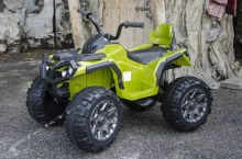 Grizzly_12V_quad_1